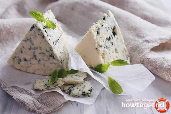 Чем вреден сыр с плесенью