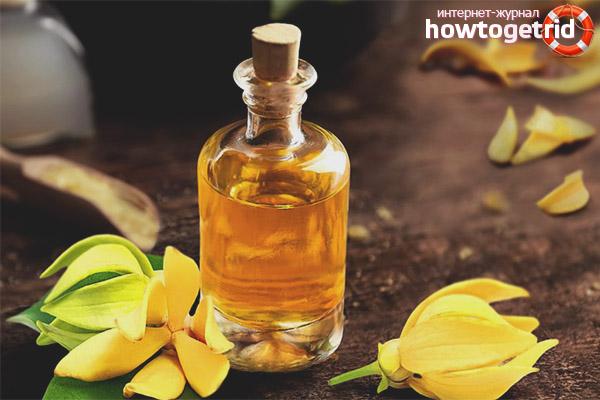 Способы применения масла иланг-иланг