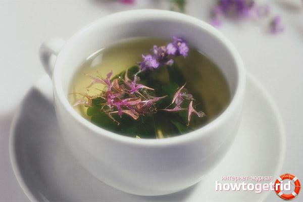 Вред чая с душицей