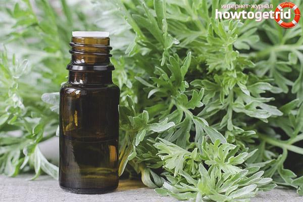 Наружное применение эфирного масла полыни