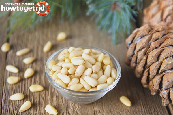 Полезные свойства и противопоказания кедровых орехов