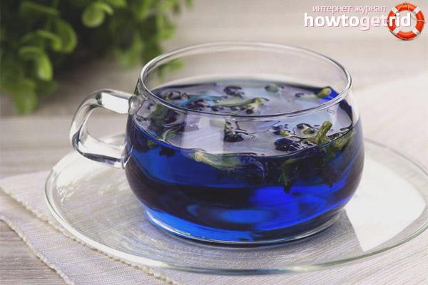 Полезные свойства противопоказания синего чая