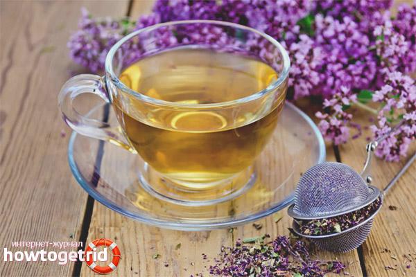 Польза и вред чая с душицей