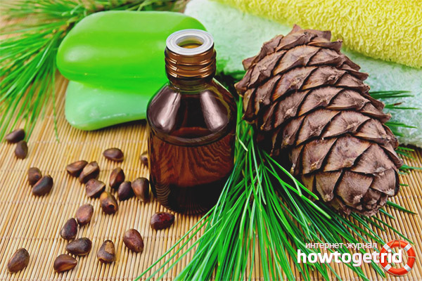 Польза настойки на орехах кедра